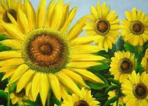 Benefits of Sunflower Oil For Hair