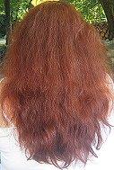 Henna for Hair